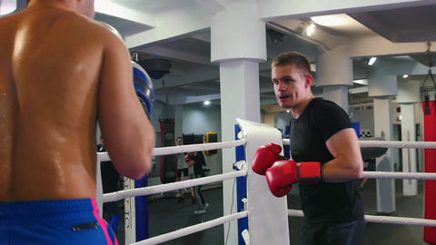 Box training - two sweaty men having a fight on the boxing ring Live Action