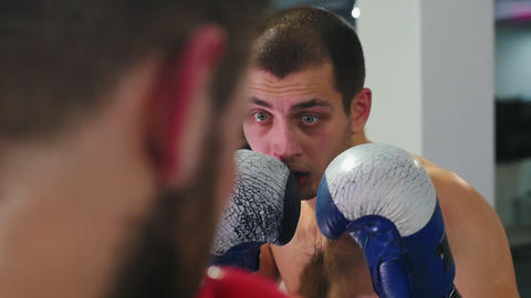 Box training - two sweaty men having an aggressive fight on the boxing ring Live Action