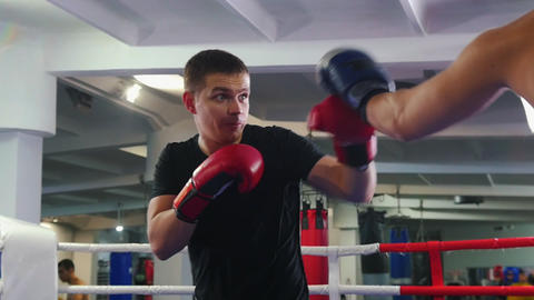 Box training - two men having a fight on the boxing ring - one of the man Live Action