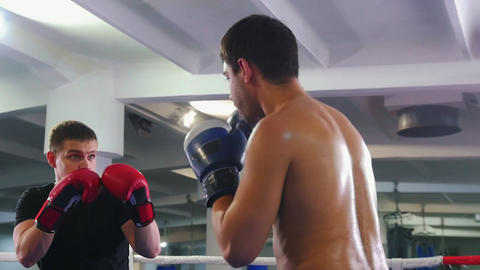 Box training - two men having an aggressive fight on the boxing ring - one of Live Action