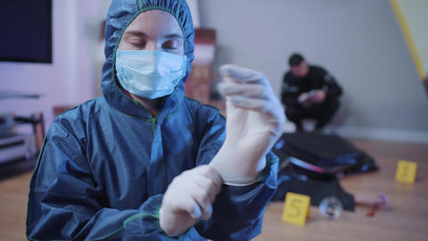 Portrait of forensic investigator in uniform putting on white gloves and looking Live Action