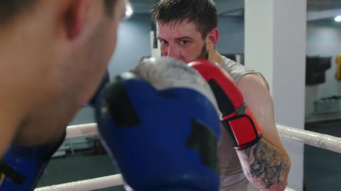 Box training in the gym - two men having a fight on the boxing ring Live Action