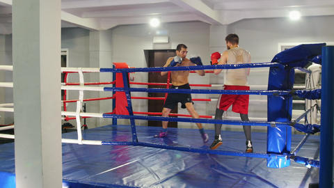 Boxing training in the gym - two athletic men having a training fight on the Live Action