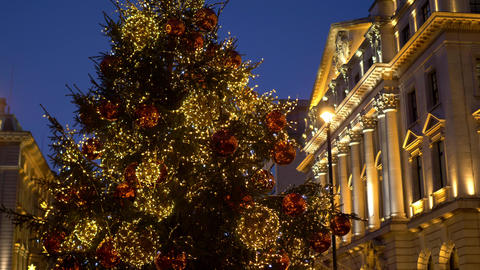 famous Christmas tree at London Waterloo Place Live Action