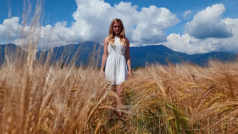 Portrait of young woman standing in yellow wheat field looking into the camera Footage