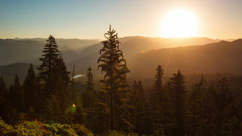Beautiful Sunrise Over A Scenic Forest Footage