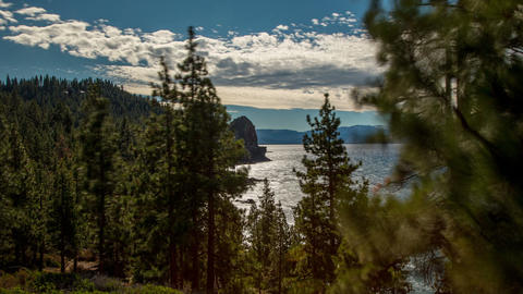 Lake Tahoe Forest Time Lapse Footage