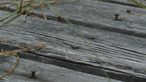 weathered gray boards with protruding nails Live Action