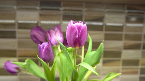 tulips in a vase on the kitchen table decorate the kitchen Live Action