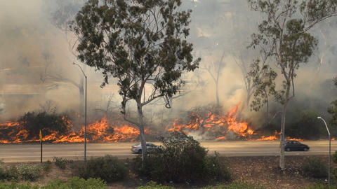 Brush Fire Los Angeles Footage