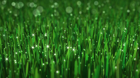 Loopable Animated Grass Background Animation
