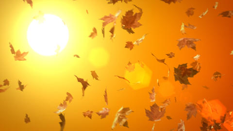 Loopable Blowing Leaves Background Animation