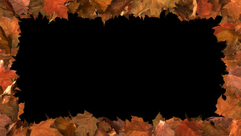 Autumn Leaf Frame with Matte Animation