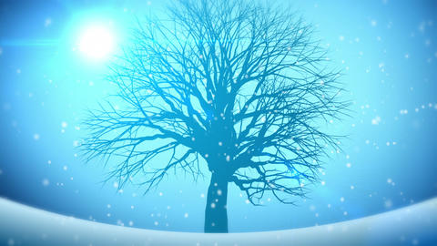 Animated Background Four Seasons Stock Video Footage