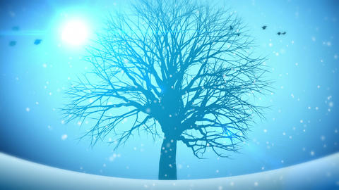 Animated Background Four Seasons Animation