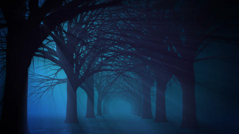 Scary Halloween Path Animation