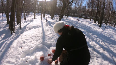 Girl and picking pomegranate from the ground ライブ動画