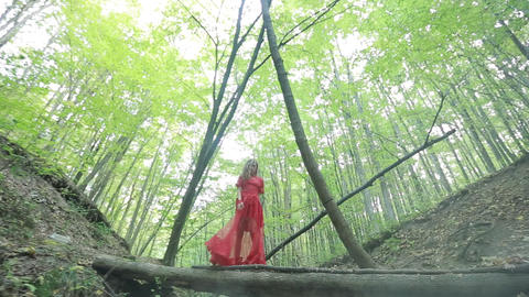 Woman Walking In Mysterious Forest Live Action