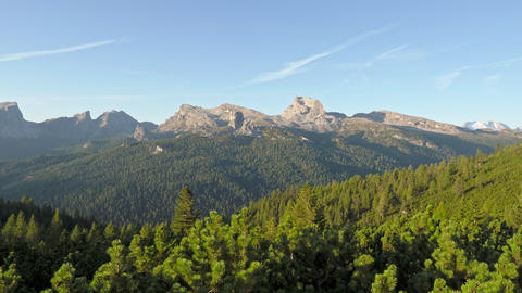 Pine and spruce forest and alpine peaks, The Tofane Group in the Dolomites, Italy, Europe Live Action