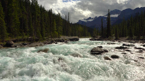 Mistaya Canyon, Banff National Park, Icefield Parkway, Alberta, Canada Live Action