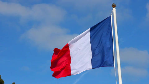 Flag of France on the Wind Waving Footage