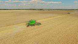 Harvester in wheat rye field aerial static 4k video Combine harvest farm rural Footage