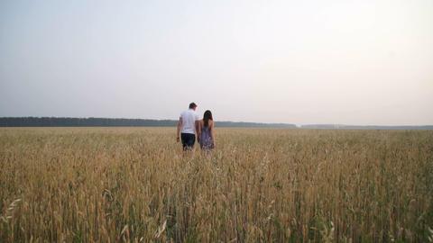 A couple in love walking in a field Footage