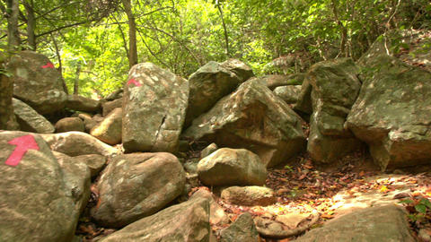 Closeup Motion According to Red Arrows on Boulders in Park Footage