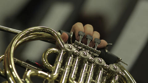 French Horn In The Hands Of A Musician Live Action