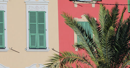 Shutters Of Colorful Houses Behind Branches Of A Palm Tree Live Action