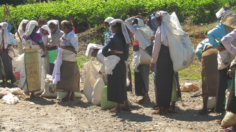 women in traditional clothes rest during holding large bags Live Action