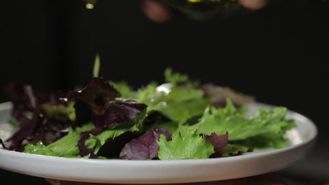 Someone eats a fresh leaves organic salad with fork, holding a plate, close up video Live Action