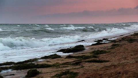 sunrise over the sea Footage