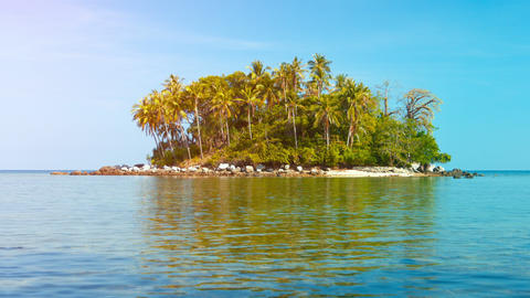 Pretty Tropical Island with Palm Trees and a Rocky Beach Footage