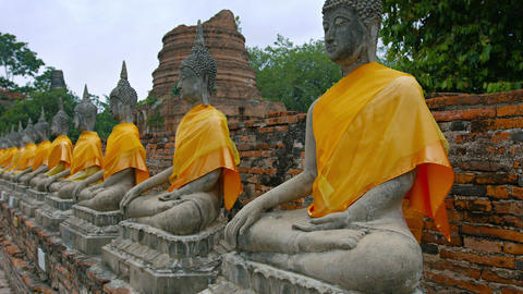 Long row of ancient. identical. hand-carved Buddha sculptures. displayed in a ro Footage