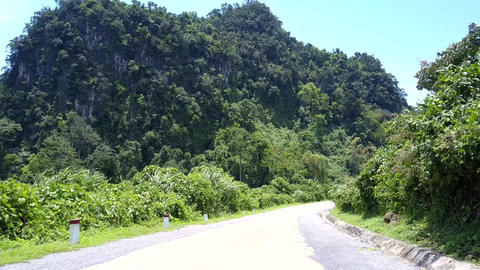 rain forest road turns by green trees and black white poles Live Action
