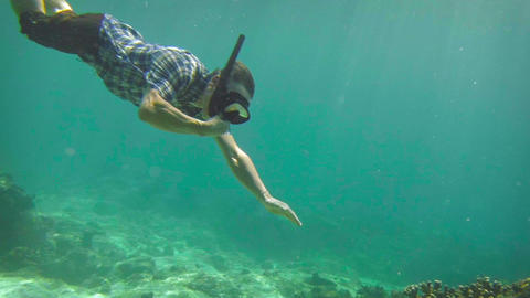 Snorkelling Tourist Dives to Shallow Reef Bottom Footage