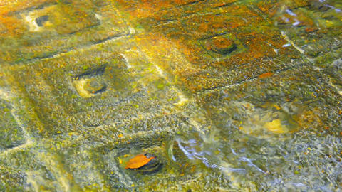Ancient symbols carved on surface of rock at the bottom. Cambodia. Phnom Kulen L Footage