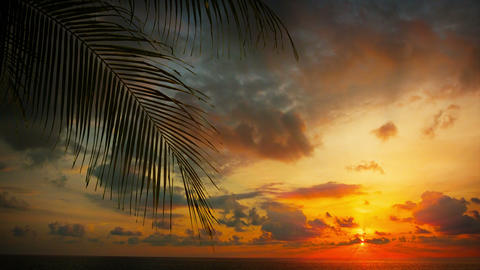 Dramatic Sunset over a Tropical Beach Footage