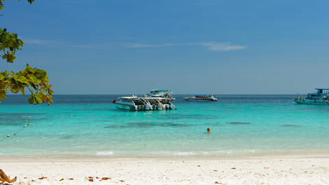 Tour boats anchored near the beach at Similan Islands National Park. an importan Footage