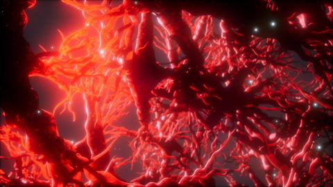 Journey through a neuron cell network inside the brain Live Action