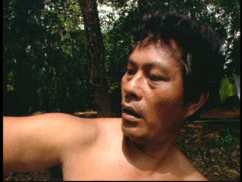 A centipede crawls on a man's arm in a Borneo jungle in... Stock Video Footage