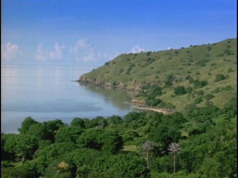 Lush vegetation adorns an Indonesian island Stock Video Footage