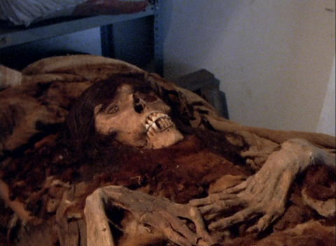 Moving POV of a skeleton in an archeological laboratory Stock Video Footage