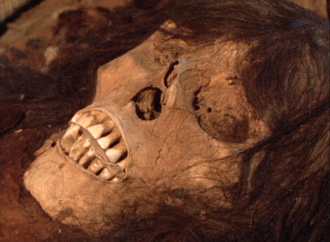 Close-up of a skull in an ancient Inca tomb in Peru Footage