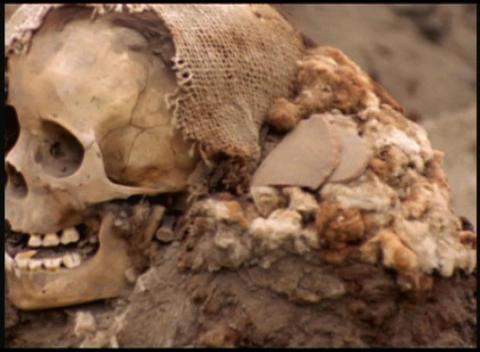 Slow pan revealing human skull Footage