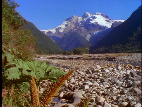 A riverbed cuts through the Andes Mountains in Patagonia, Chile Footage
