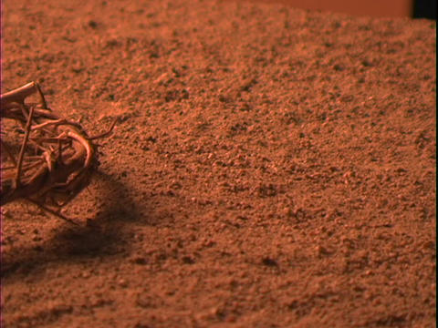 A crown of thorns lies in the dirt Stock Video Footage