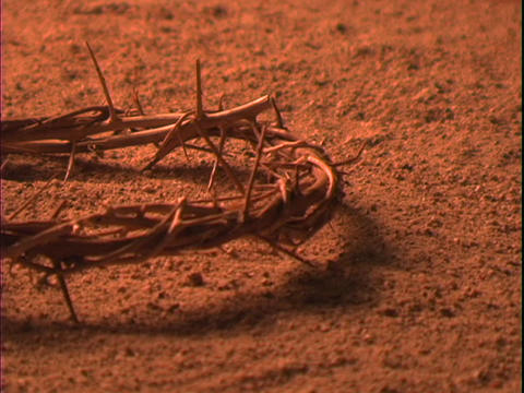 A crown of thorns lies in the dirt Live Action