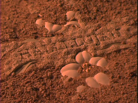 Sand blows away from a Christian cross to reveal the word... Stock Video Footage